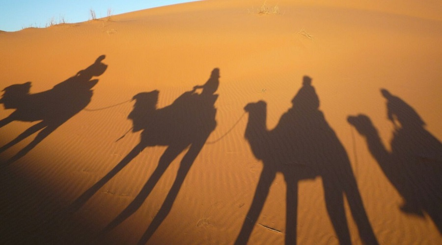 2 Days Tour From Fes To Merzouga