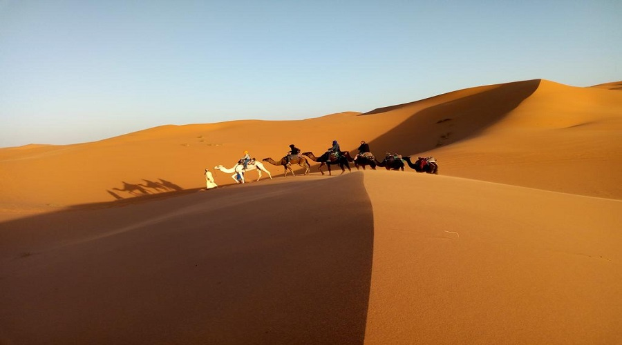 8 Days Tour From Casablanca to Merzouga Desert, Fes and Marrakech